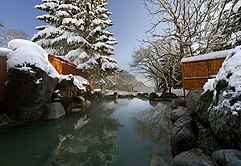 Onsen at Green Leaf