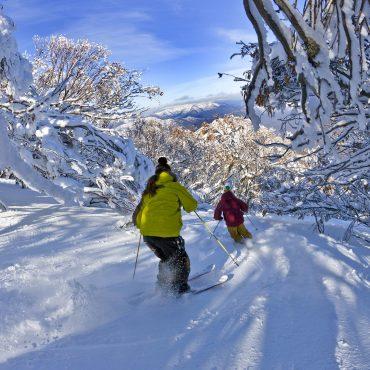 Ski Mt Buller school groups